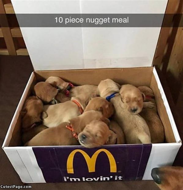 10 Piece Nugget