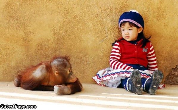 Monkey And Cute Little Girl